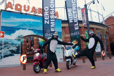 Penguins on electric scooters for World Environment Day